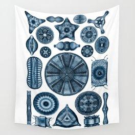Ernst Haeckel Diatomea Diatoms in Navy Blue Wall Tapestry