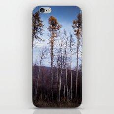 lll iPhone & iPod Skin
