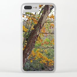 Cuyahoga Camouflage Clear iPhone Case
