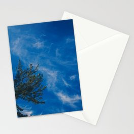 The eagle and the blue sky Stationery Cards