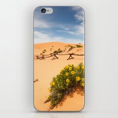 Coral Pink Sand Dunes iPhone & iPod Skin