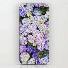 Crazy In Love iPhone & iPod Skin
