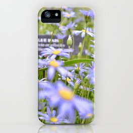 Longwood Daisies iPhone Case