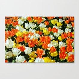White Orange and Yellow, Oh My Canvas Print