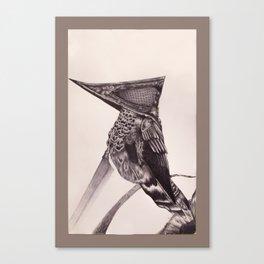 Pyramid Headed Hummingbird Canvas Print