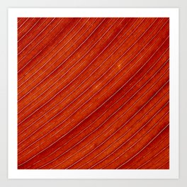 orange leaf II Art Print