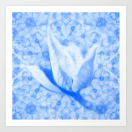 Abstract Bauhinia flower in blue Art Print