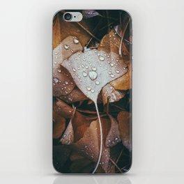 November Rain iPhone Skin