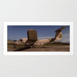 C-115 Bufallo Art Print