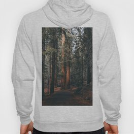 Walking Sequoia Hoody