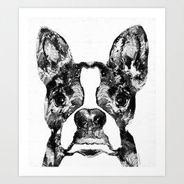 Black And White Terrier Dog Art Sharon Cummings Art Print