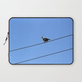 Crested Pigeon Laptop Sleeve