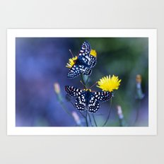 The Checkerspot Couple Art Print
