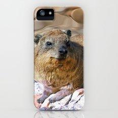 African Rock Hyrax Slim Case iPhone (5, 5s)