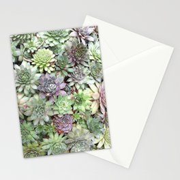 Desert Flower II Stationery Cards