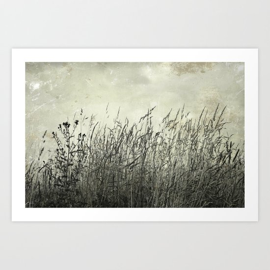 swaying grasses Art Print