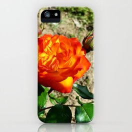 Fiery Rose, 2020 from Roberta Winters Photography iPhone Case