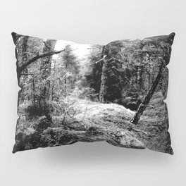 Fall Forest Morning Pillow Sham