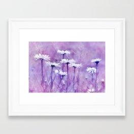 Marguerite 0121 Framed Art Print