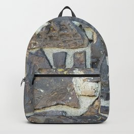 Dinosaur Bone House #1 Backpack