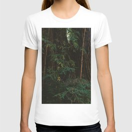 Redwood Forest III T-shirt