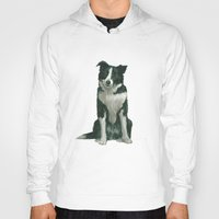 border collie Hoodies featuring border collie by phil art guy