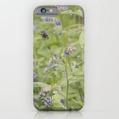 Bee in the forget me nots iPhone 6s Slim Case