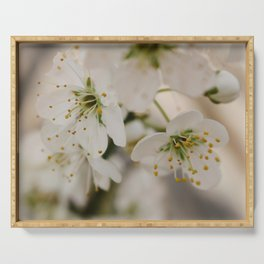 Plum Blossoms Serving Tray