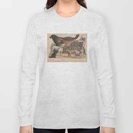 Vintage Dog Breeds Illustration (1874) Long Sleeve T-shirt