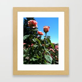 Bright Garden Framed Art Print