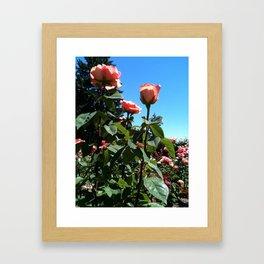 Bright Garden Framed Art Print