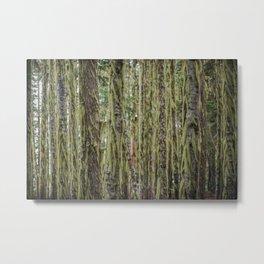 Much Moss Metal Print