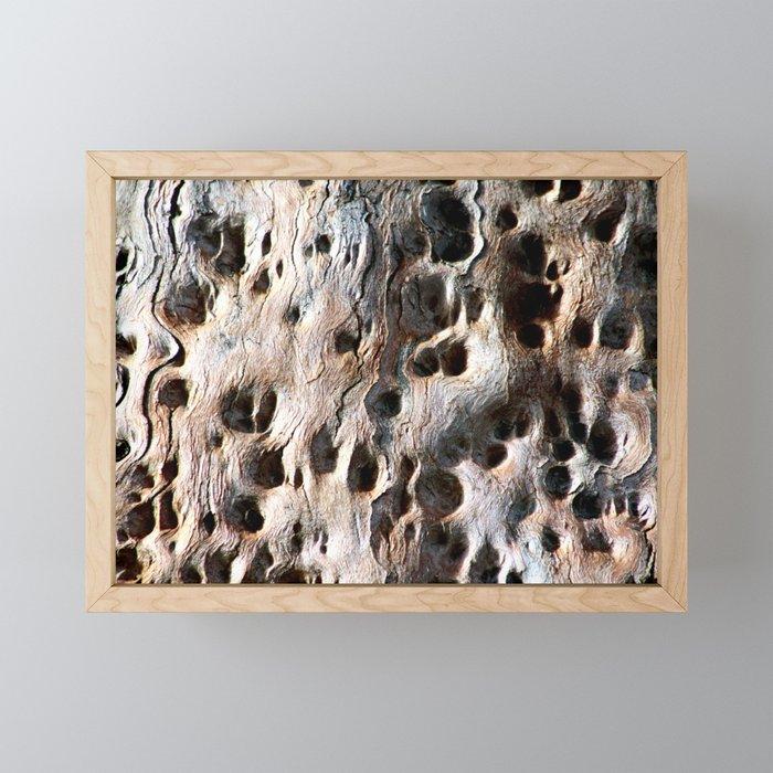 Old Eucalyptus Tree Wood Framed Mini Art Print