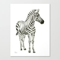 Zebra Watercolor Baby Animals Canvas Print