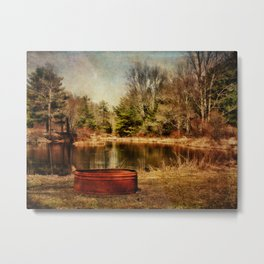 Playing at the Pond Metal Print