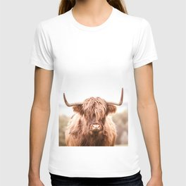 Highland Cow in a Field Southern T-shirt