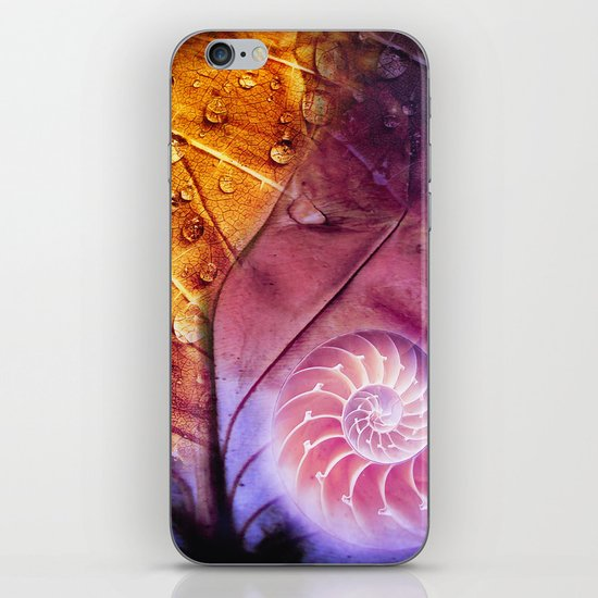 SHELTERED - Conceptual Composing with shell, leaf and waterdrops iPhone & iPod Skin