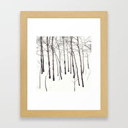 Walk in the White Lightning Wonderland of Winter Framed Art Print
