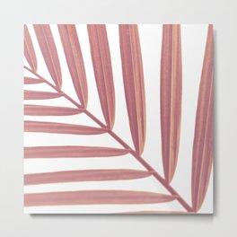 Pink Vine Metal Print