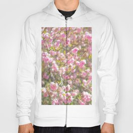 Stylish Cherry Blossoms Hoody