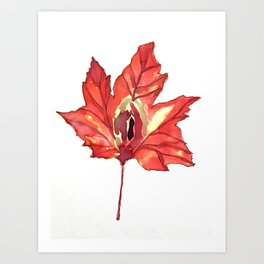 Vulvas in Nature: Maple Art Print