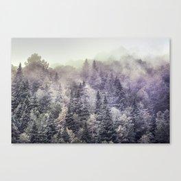 Suprise sunrise. Into the foggy woods. Canvas Print