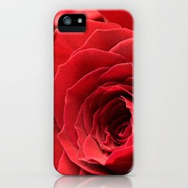 A Rose - The Flower Collection iPhone Case