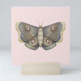 papillon de nuit Mini Art Print