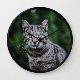 Cat by Leonie Photograph Wall Clock