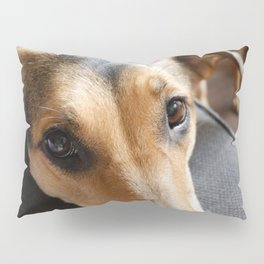 Dat Nose Pillow Sham