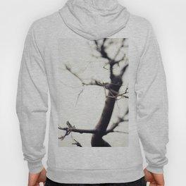 Small Tree Hoody