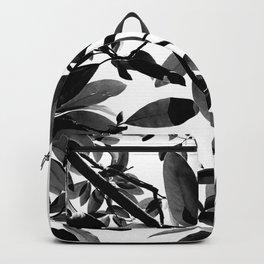 clara meer 2 Backpack
