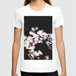 Japanese Apricot Blossoms Against The Black Background T-shirt