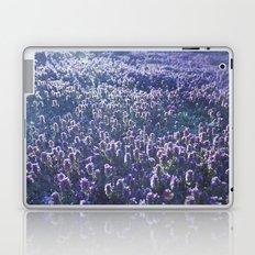 Lavendar Sunset Laptop & iPad Skin